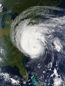 Beispielfoto eines Florida Hurricane
