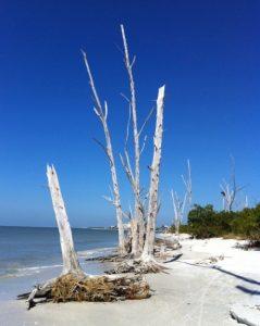 Florida mit Kindern mehr als nur ein Strand: Lovers Key State Park