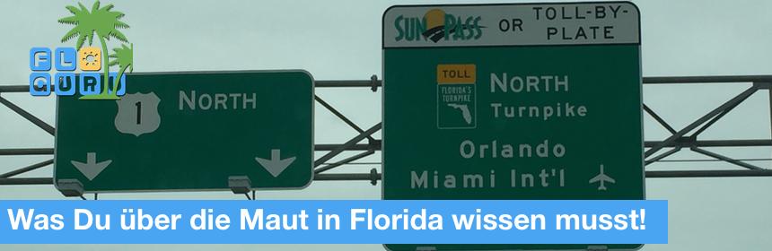 Florida Maut Alles was Du wissen musst