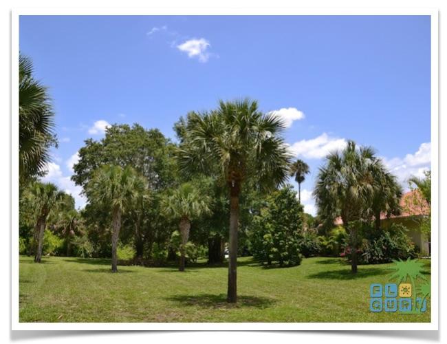 Florida-Ferienhaus-Lehigh-Acres-PalmGarden-12-garten